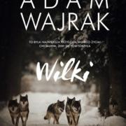 """Czy wilki polują na ludzi? O """"Wilkach"""" Adama Wajraka"""