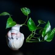 Dizajn dla roślin